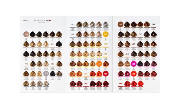 Erayba Equilibrium Color Chart